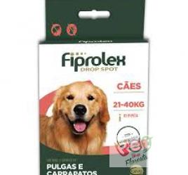 FIPROLEX CÃES 21 - 40 Kg - 1 ampola