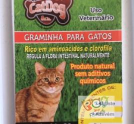 Graminha Cat-Dog & Cia Para Gatos